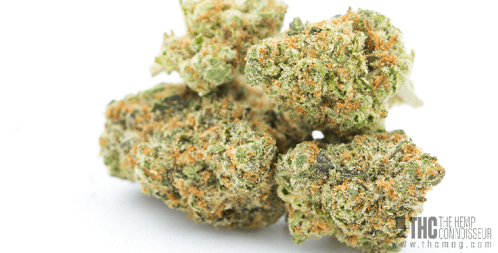 Featured Strain Birthday Cake From Higher Grade